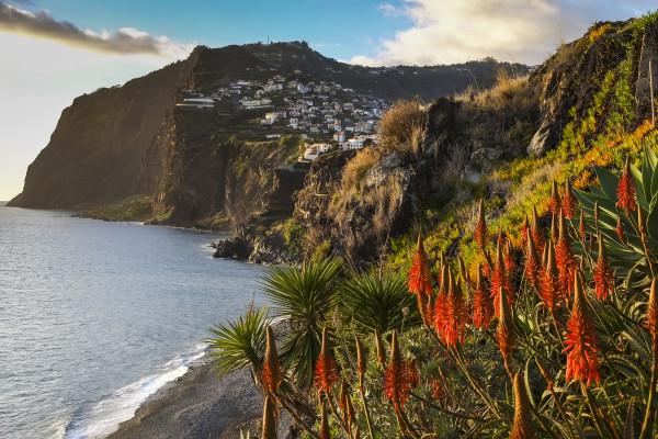Last Minute Madeira - Urlaubs Reise buchen