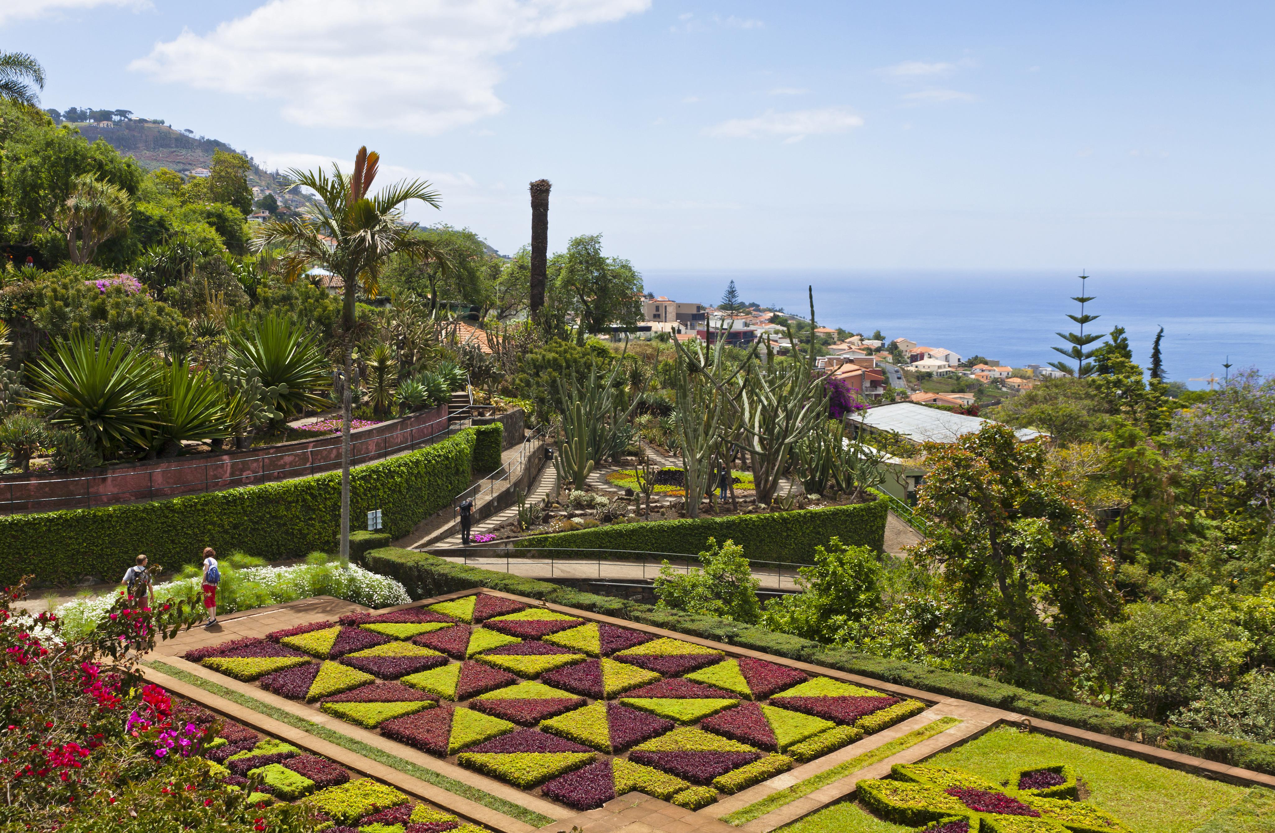 Madeira Bilder Madeira Urlaub Madeira Reisen Buchen Madeira