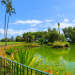 See im Santa Catarina Park in Funchal