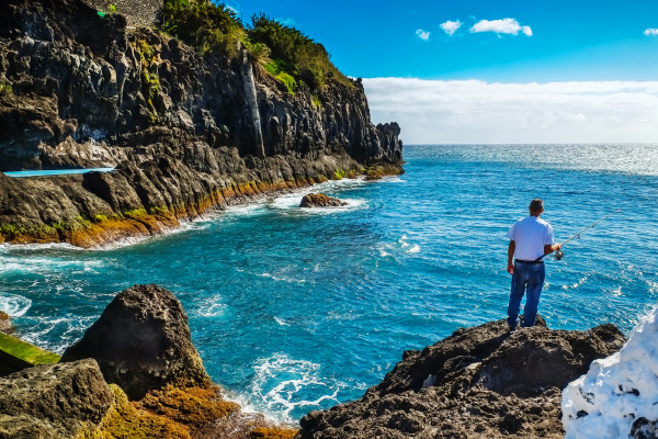 Madeira Insel - Blumeninsel im Atlantik